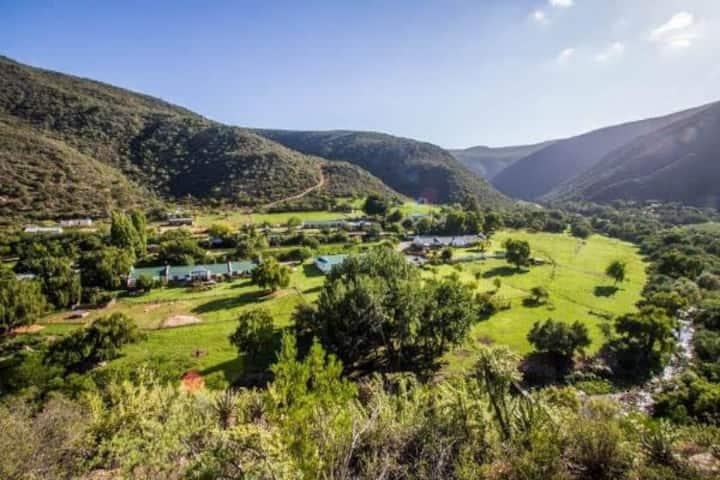 Luxury family Safari Tent mountain view @Old Mill