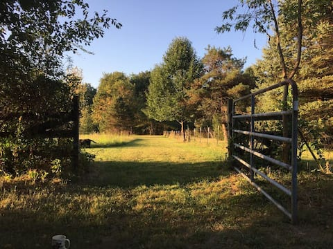Convenient Primitive Camping on State Route 73