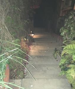 Wide steps with path lighting and motion security lights.