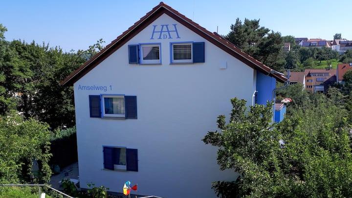 Zimmer in WG - Wernau