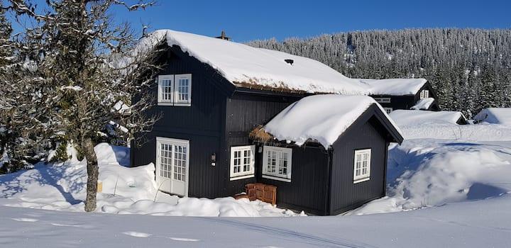 Hafjell - Pen og romslig familiehytte med loftstue