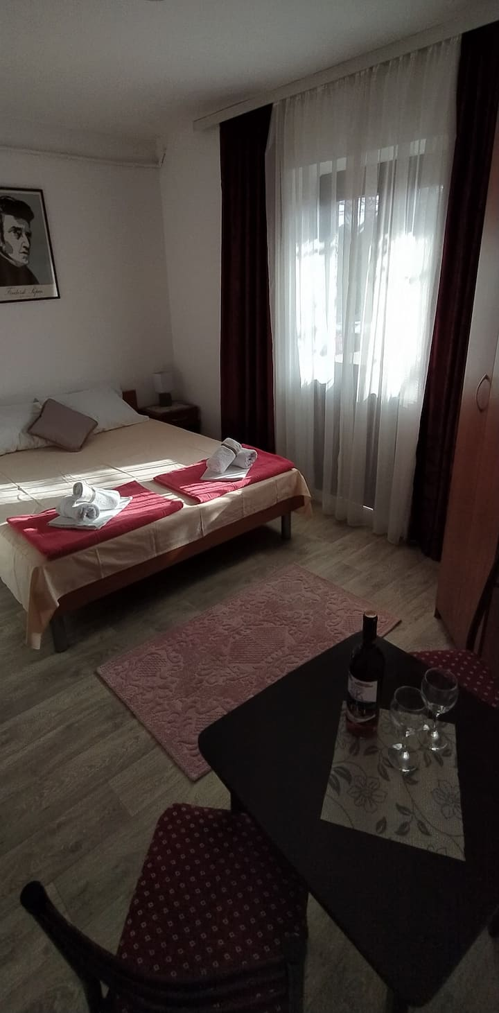 Apartment Danilo