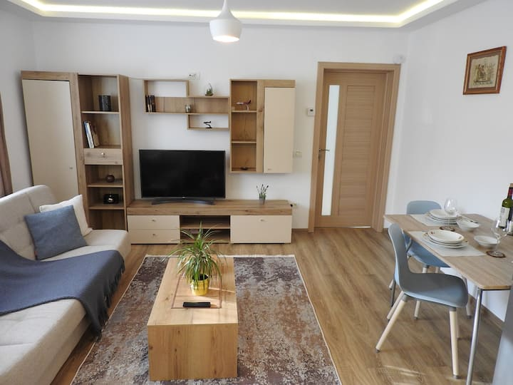 Confortable One bedroom apartment close to center