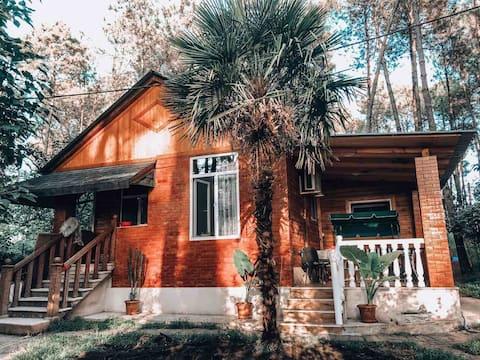 E-cottage Kaprovani