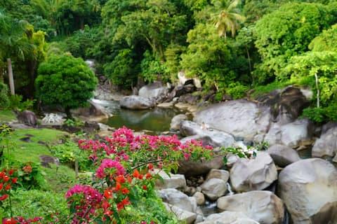 El Yunque Rainforest Prep-Camping /No clean fee