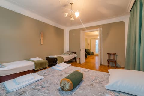 ❤Cosy apartment near the Stalini museum
