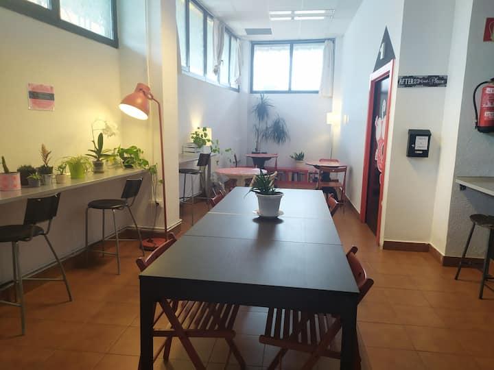 Alojamiento en dormitorio compartido en Deusto!