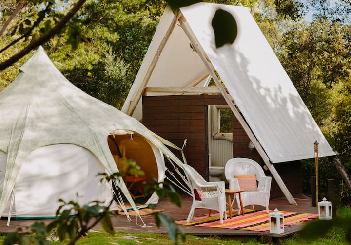 Wild Forest Estate - Glamping