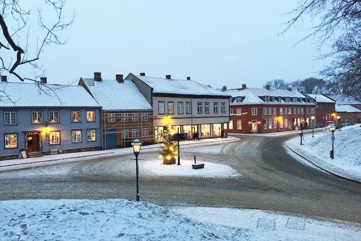 Sjarmerende i Gamlebyen, moderne & retro leilighet
