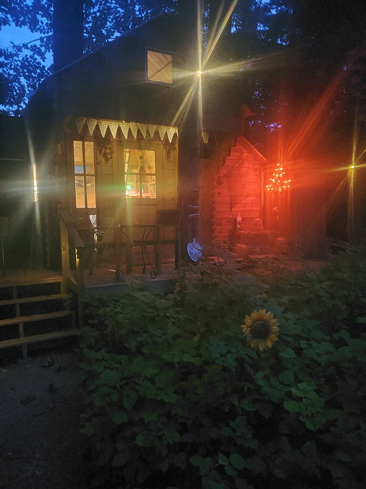 COME UP FOR FALL COLOURS!! BUNKIE BY THE BEACH!!