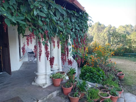 WIND CHIMES, Celeistal view in a Himalyan Setting