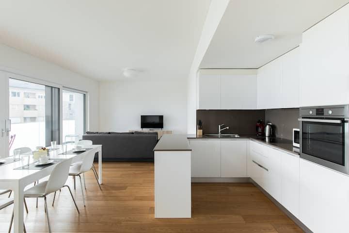 Apartment with lake Maggiore view (BRISSAGO 2)