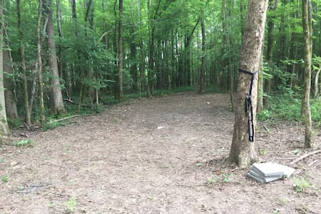Campsite is level and clear, with no rocks or obstructions. It is uneven, with tree roots, but easily managed.