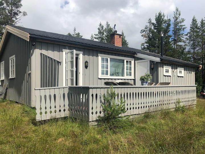 Nesbyen/ Tunhovd Nyrenovert hytte med høy standard