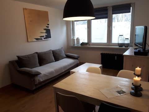 Park studio flat Katowice/Chorzów