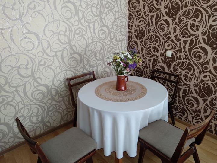 Уютный дом в самом центре Каменец-Подольского