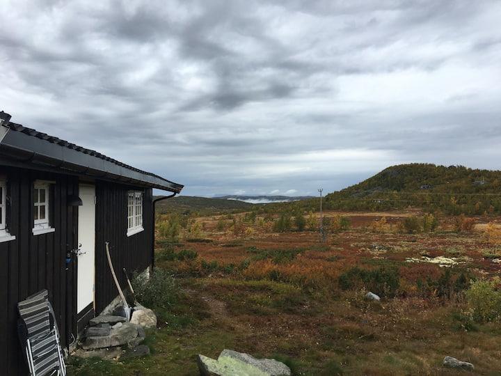 Hytte i høyfjellet - Dagalifjell