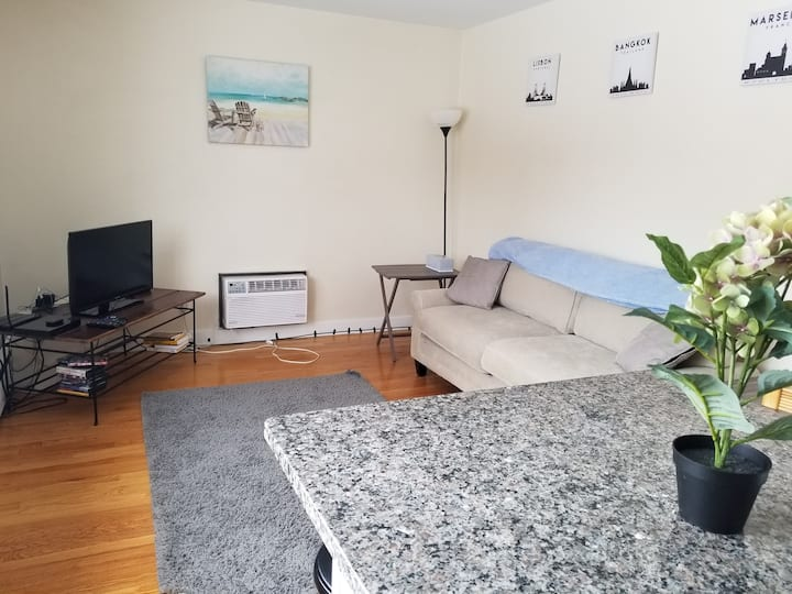 Cozy & Bright 1BR near Lake & Brady St w/Parking