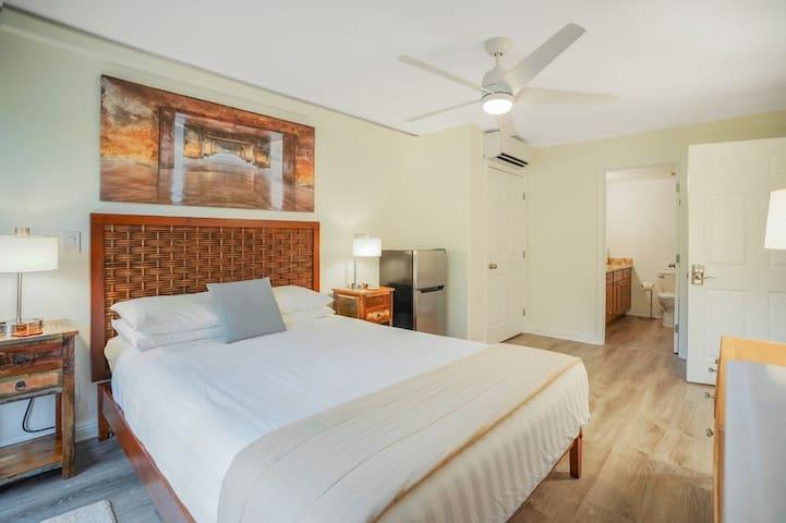 Spacious Private Guest Suite + Bath, Queen Bed, AC comfort. Secure locked door.