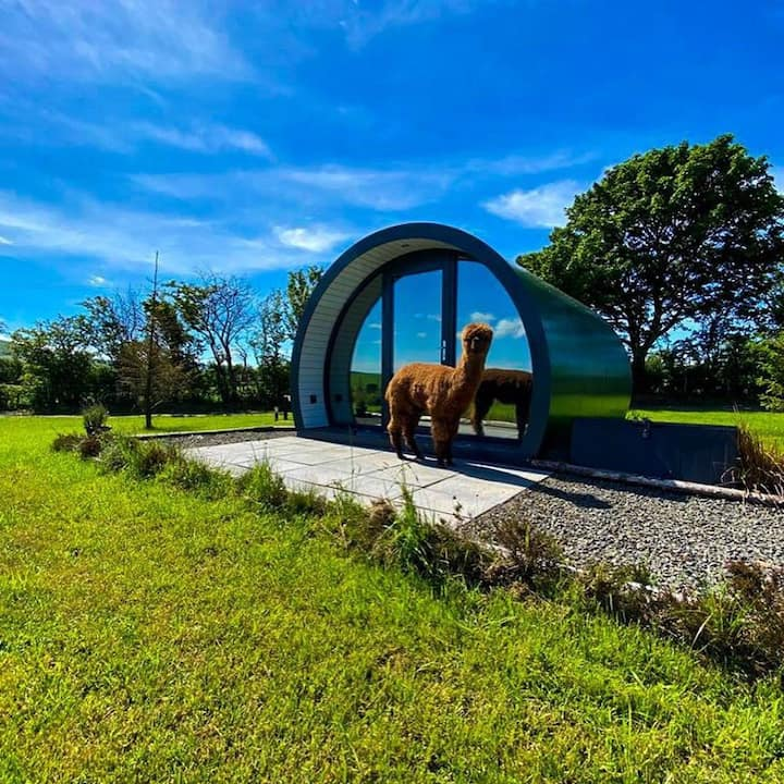 Fair Head Glamping Pods, Ballycastle