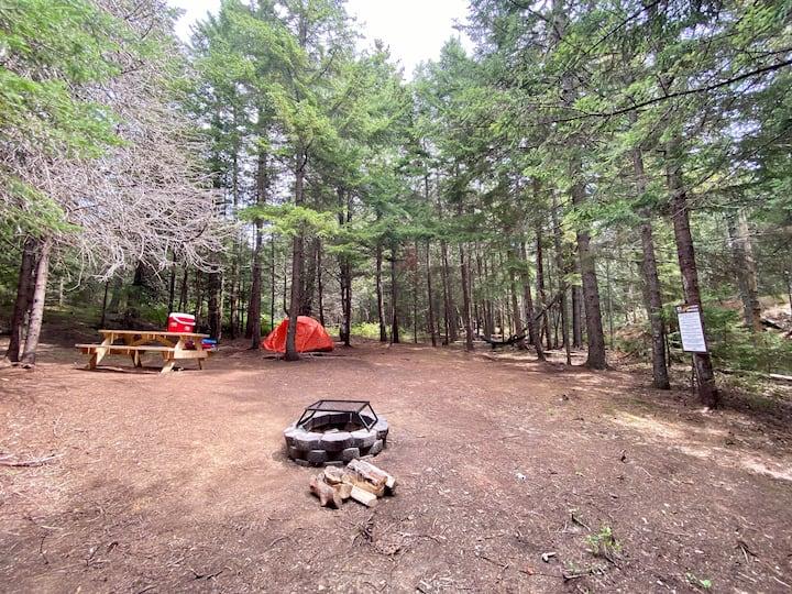 Acadia East Campground - Acadia Mtn Campsite