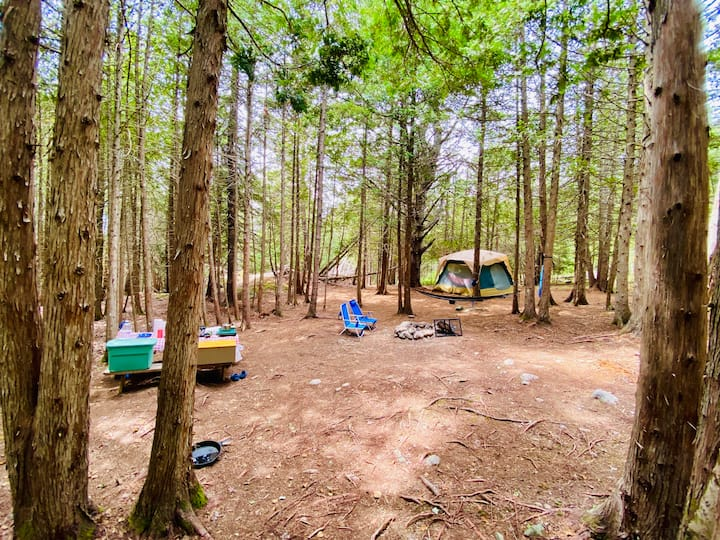 Acadia East Campground - Cadillac Mtn Campsite