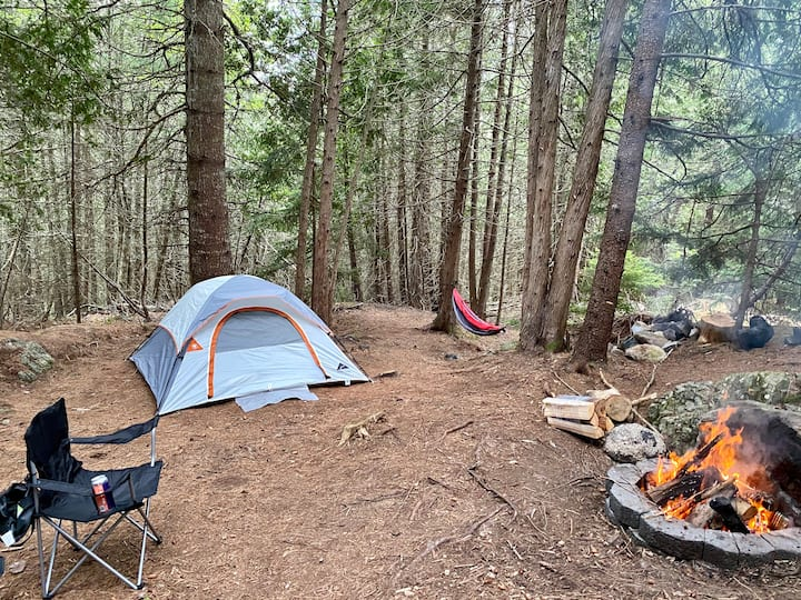 Acadia East Campground - Thunder Hole Campsite