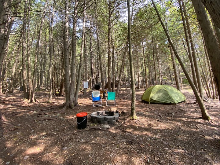 Acadia East Campground - Beehive Campsite