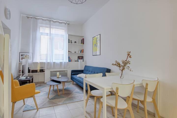 Calm apartment near St-Sauveur train station