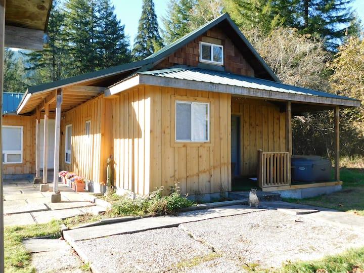 Cabin 53-private, Mtn views, hot tub, near river