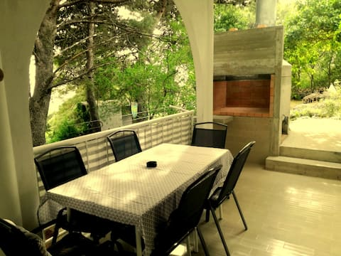 Pine trees apartment