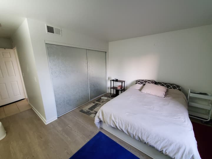 Large Private Room & Bathroom in Beautiful Condo