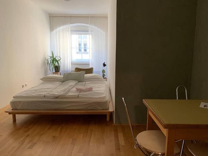 Toplage: Linzer Hauptplatz (Green Apartment)