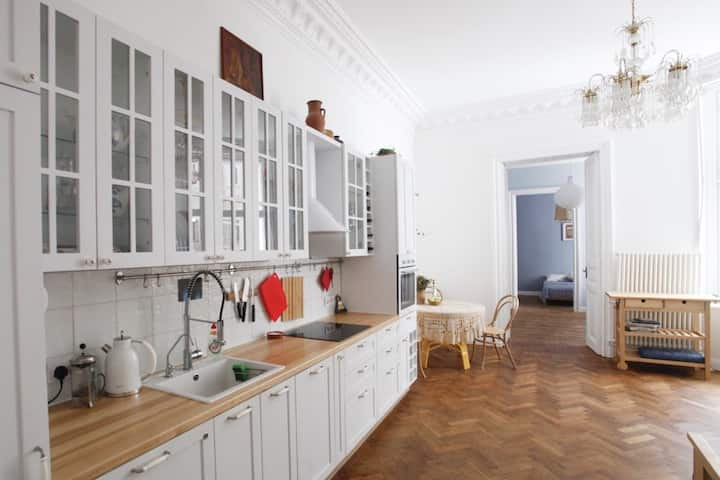 Elegant flat with balcony in a historic building