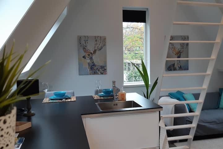 Gezellig, licht appartement Klein Waldeck in Velp