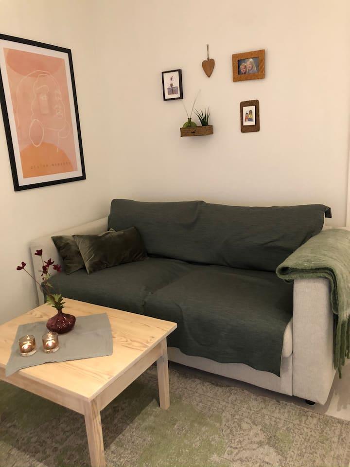 Møllenberg. Moderne, koselig leilighet.
