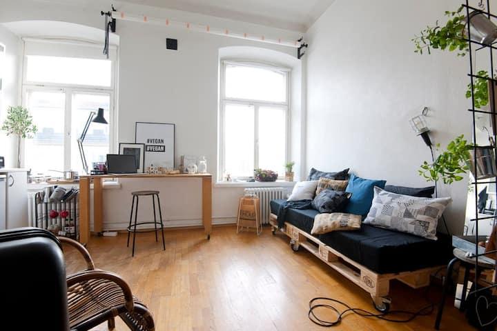 Central 25m2 studio apartment in Helsinki, Kamppi.