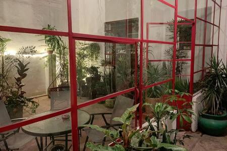 Casa Medellín de las plantas
