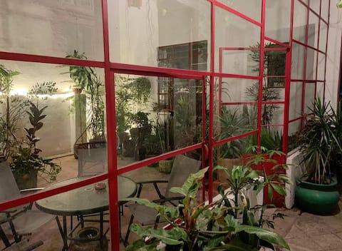Medellín's house of plants