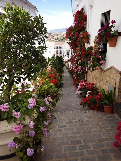 Casa de las Flores - ett bildperfekt läge!