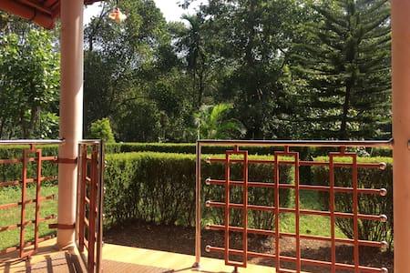 Wide entrance to the Patio - Apple villa