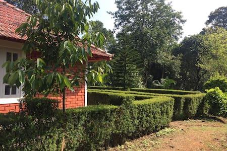 Way to Apple villa