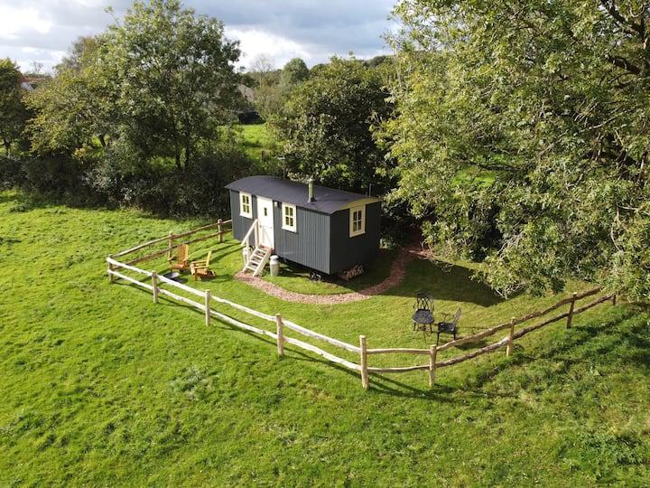 Organic farm Shepherd's Hut with a view