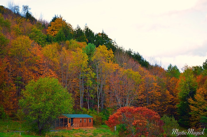 Remote new log home, great internet, sleeps 6.