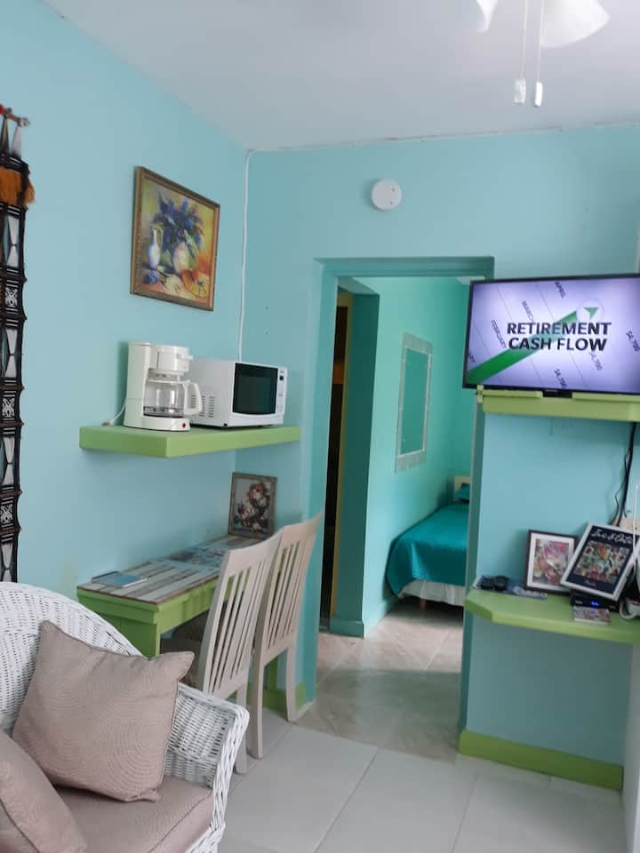 Tropical Blossom Apt. with washer, T.V, a/c, wi-fi
