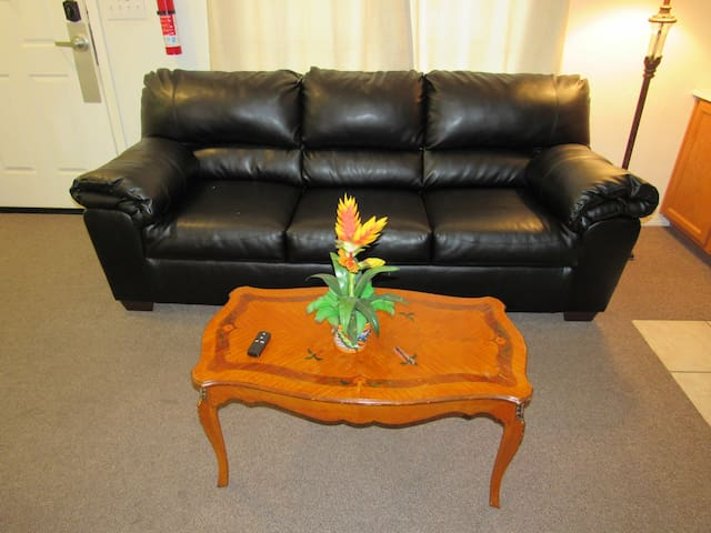 Leather Pullout Couch, French Provincial Coffee Table!