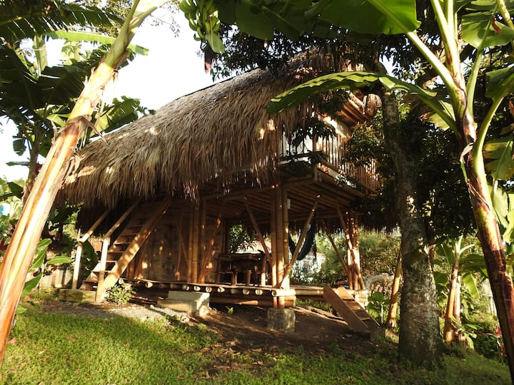 The Bamboo Coffee House