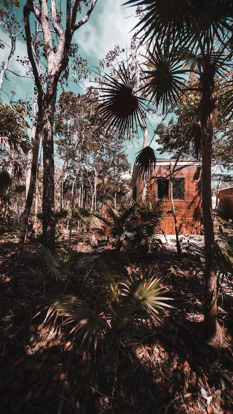 MINI| Cottage in the Mayan Jungle