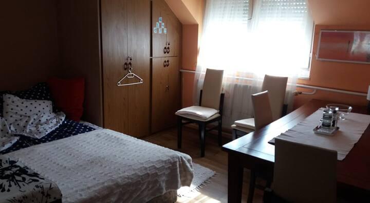 Debrecen-belvárosi szoba  kiadó