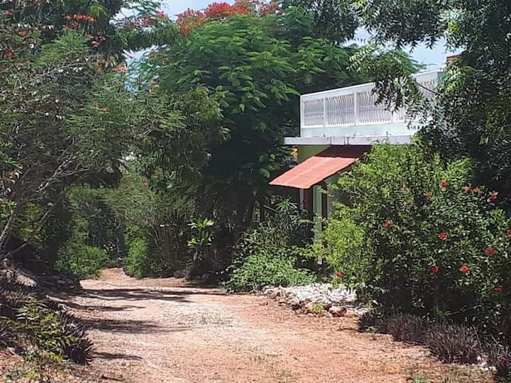 Residences Ti Kolibri repos assure et detente